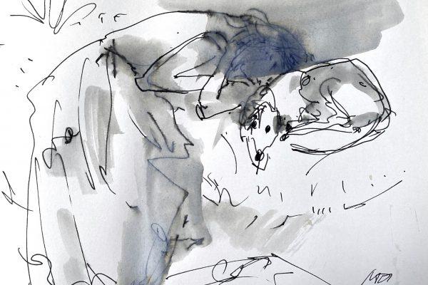 <span>Drawings</span>